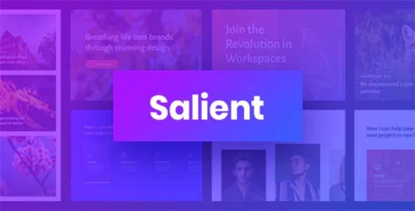 Het beste WordPress theme: Salient